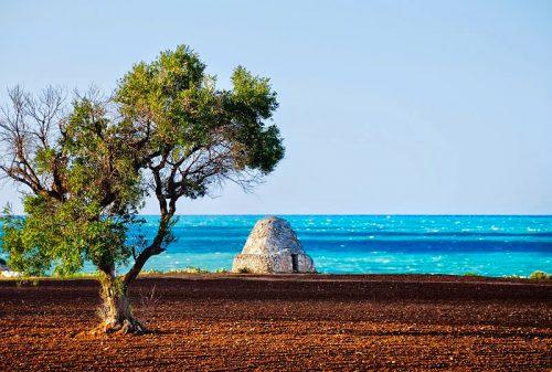 Eau Mediterranee: l'essenza magica è la Puglia, regione più bella del mondo